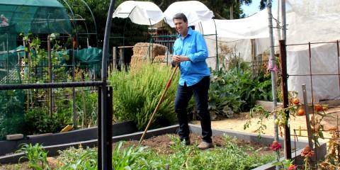 Glandore Community Garden