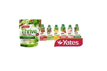 Yates Thrive Pods