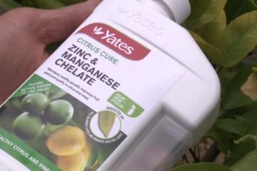 Yates Leaf Greener