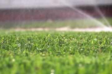 s03-e07-turf-farm