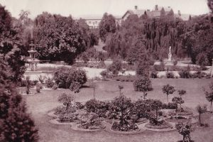 haunted-garden